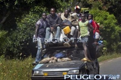 [Peugeot-Club.net] - африк_пежо.jpg