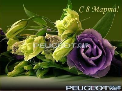 peugeot-club.net - 3064164.jpg