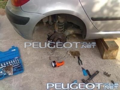 peugeot-club.net - 88ce190face543cf-main.jpg