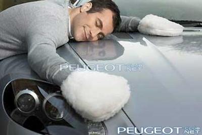 [Peugeot-Club.net] - Протирка.jpg