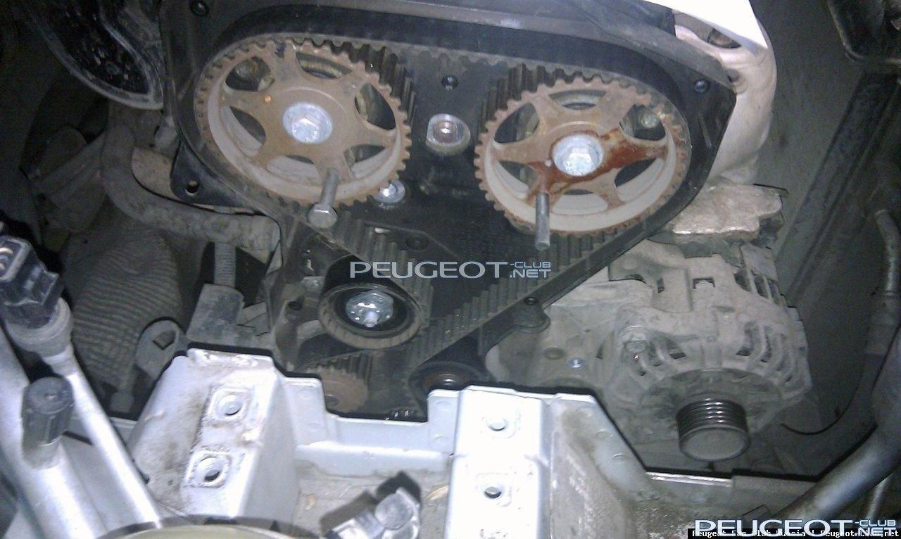 замена ремня грм двигателя ситроен 2,0hdi