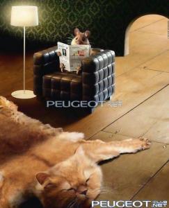[Peugeot-Club.net] - Pictures_37.jpg