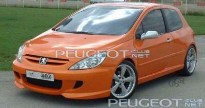 [Peugeot-Club.net] - Sbarro_307_racing_titre.jpg