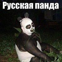 Фотография DimkaLev
